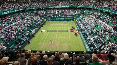Zdf Sportextra - Tennis - Finale In Halle: Federer - A. Zverev Am 25. Juni