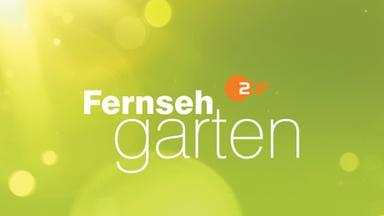 Show Zdf Fernsehgarten Musikalische Talente Aufgepasst