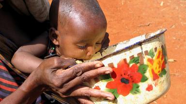 Nano - Der Hunger In Der Welt Wird Größer