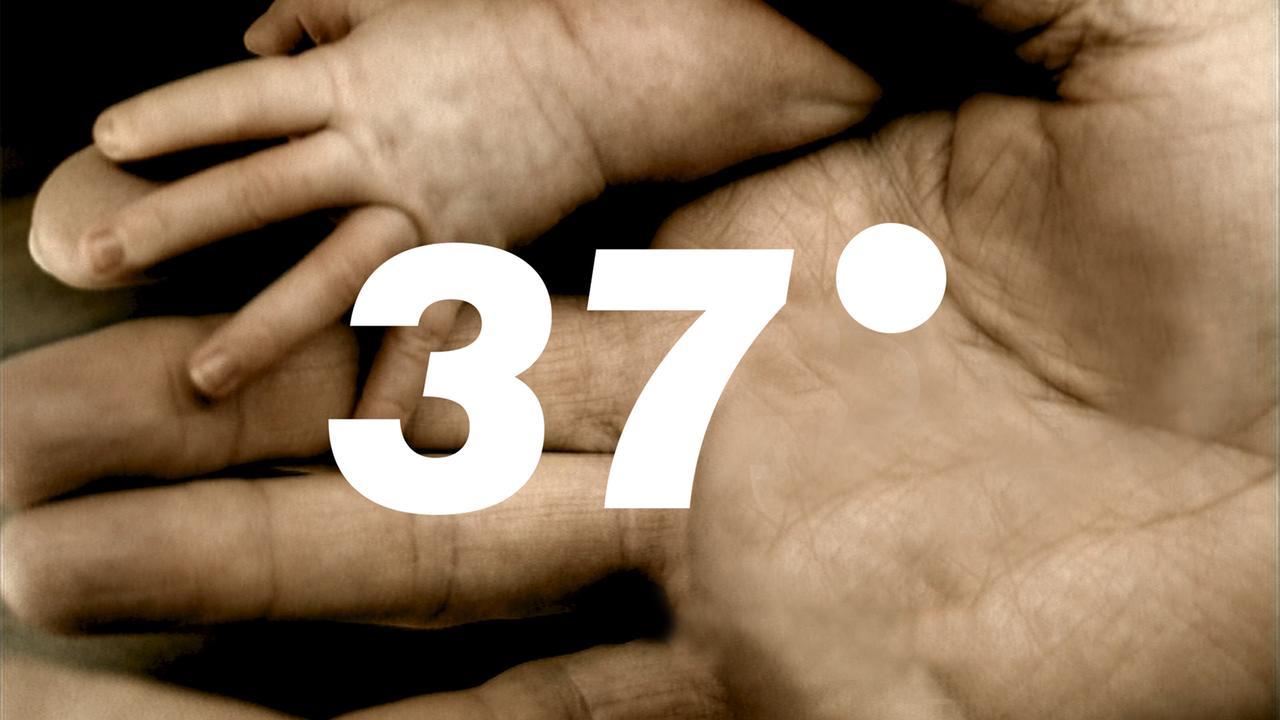 37grad Zdf