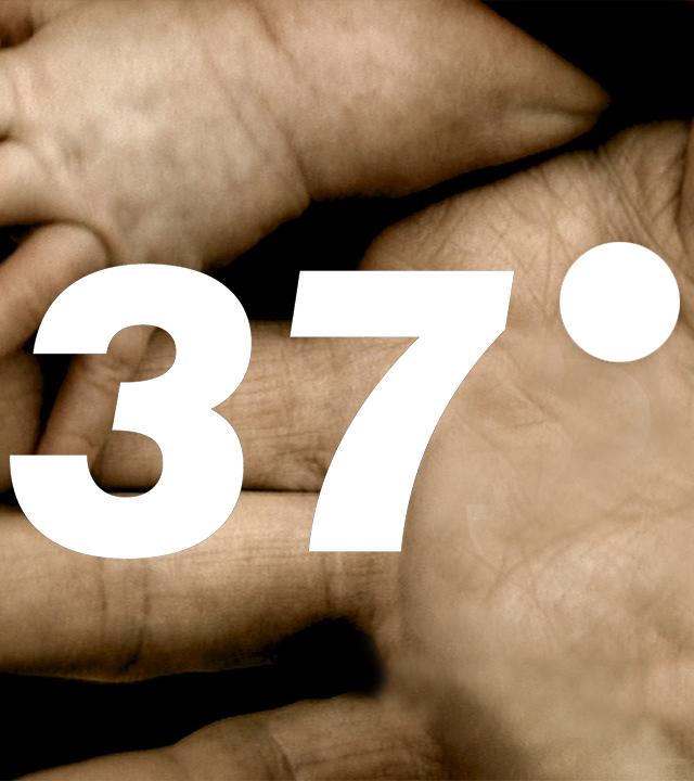 37 Grad
