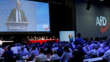 Standpunkte - Standpunkte: Bericht Vom Parteitag Der Afd In Augsburg