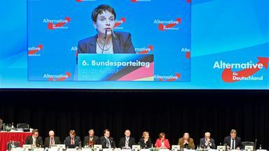 Standpunkte - Standpunkte: Bericht Vom Parteitag Der Afd In Köln