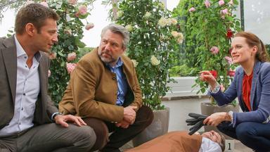 Die Rosenheim-cops - Die Rosenheim-cops: Alle Wollen Stockl