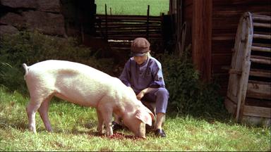 Astrid Lindgren: Pippi, Michel, Lotta Und Co. - Astrid Lindgren: Als Michel Die Tiere Mit Kirschen Fütterte