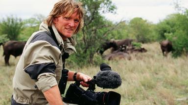 Terra X Dokumentationen Und Kurzclips - Kielings Wildes Afrika