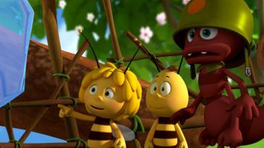 Die Biene Maja: Abenteuer Auf Der Klatschmohnwiese - Die Biene Maja: Archibalds Baumhaus