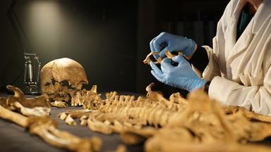 Zdfinfo - Aufgedeckt – Rätsel Der Geschichte: Die Skelette Von York