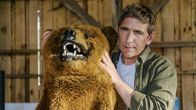 Löwenzahn - Löwenzahn: Bär