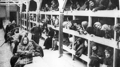 Zdfinfo - Countdown Zum Untergang: Januar 1945