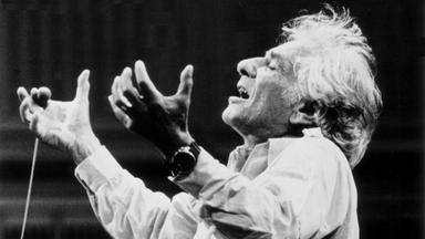 Musik Und Theater - Bernstein Story