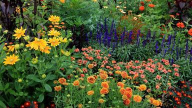 Sonntags - Tv Fürs Leben - Gartenglück