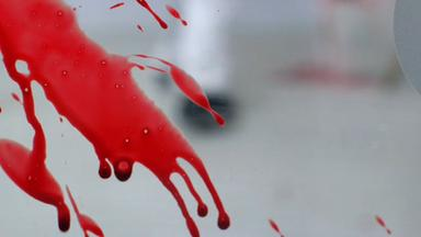 Zdfinfo - Die Waffen Der Ermittler - Was Blut Verrät
