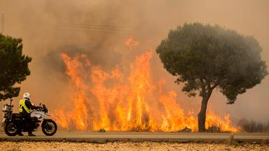 Ein Militaerpolizist beobachtet am 25.06.2017 in Mazagon (Spanien) einen Waldbrand.
