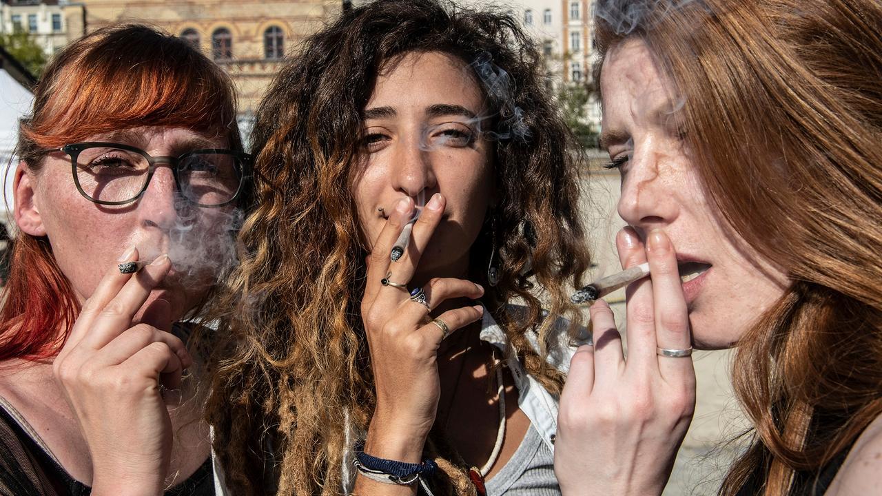 Wie verbreitet ist verunreinigtes Cannabis?