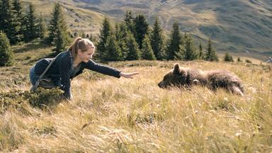 Filme - Filme: Clara Und Das Geheimnis Der Bären