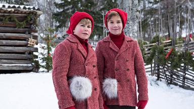 Filme - Film Ab! / Weihnachten: Der Kleine Wichtel Kehrt Zurück