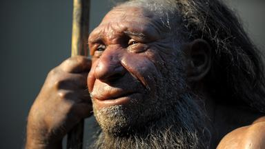 Zdfinfo - Der Neandertaler-code - Rätselhafte Urzeitjäger