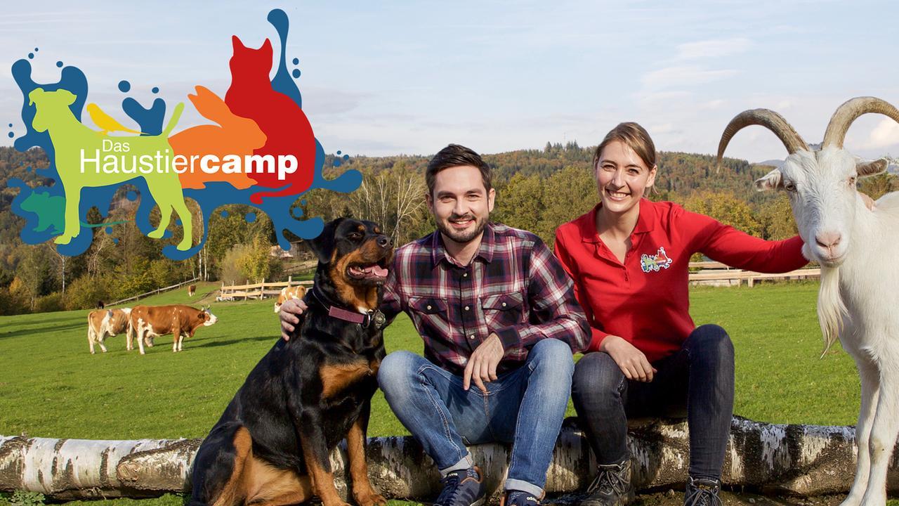 Haustiercamp