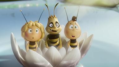 Die Biene Maja: Abenteuer Auf Der Klatschmohnwiese - Die Biene Maja - Der Kinofilm: Freundschaft Ist Dicker Als Honig