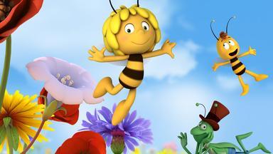 Die Biene Maja: Abenteuer Auf Der Klatschmohnwiese - Die Biene Maja: Eine überraschung Für Maja