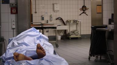 Zdfinfo - Die Geheimnisse Der Toten: Rechtsmedizin Auf Täterjagd