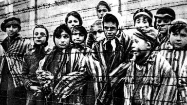 Zdf-morgenmagazin - Die Letzten Zeuginnen - Vom überleben In Auschwitz