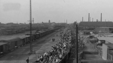 Zdfinfo - Die Wahrheit über Den Holocaust (8)