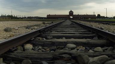 Zdf-morgenmagazin - Dokumentation: Die Letzten Zeugen Von Auschwitz