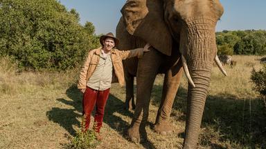 Löwenzahn - Löwenzahn: Afrika / Elefanten