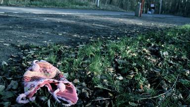 Zdfinfo - Entführte Kinder - Die Fälle Kronzucker Und Von Gallwitz
