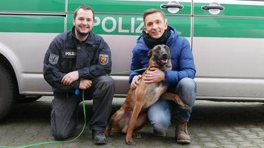 Pur+ - Das Entdeckermagazin Mit Eric Mayer - Pur+ Polizeihunde Im Einsatz
