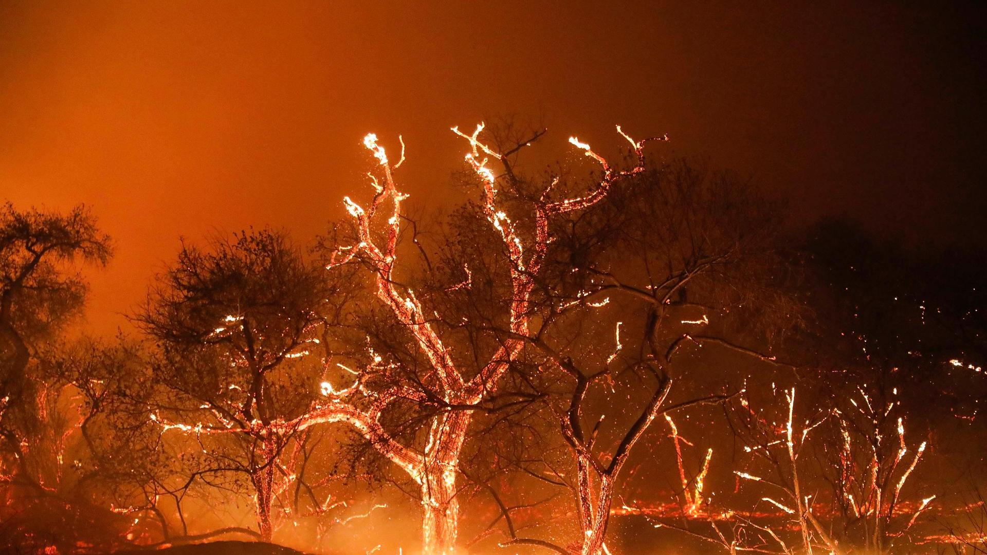 for hot, horny kostenloser Videochat 18 uninhibited down earth