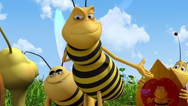Die Biene Maja: Abenteuer Auf Der Klatschmohnwiese - Die Biene Maja: Wahlkampf Auf Der Klatschmohnwiese