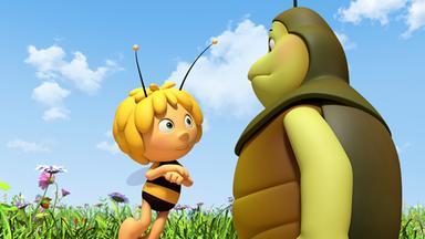 Die Biene Maja: Abenteuer Auf Der Klatschmohnwiese - Die Biene Maja: Kurt Hat Eine Krise