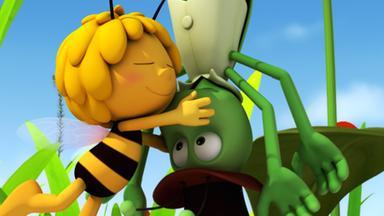 Die Biene Maja: Abenteuer Auf Der Klatschmohnwiese - Die Biene Maja: Der Verrückte Tag