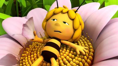 Die Biene Maja: Abenteuer Auf Der Klatschmohnwiese - Die Biene Maja: Die Lausebiene