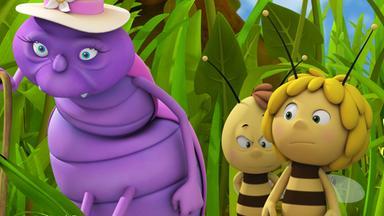 Die Biene Maja: Abenteuer Auf Der Klatschmohnwiese - Die Biene Maja: Frau Rosi Zieht Um