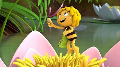 Die Biene Maja: Abenteuer Auf Der Klatschmohnwiese - Die Biene Maja: Majas Kuchenrezept