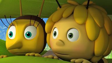Die Biene Maja: Abenteuer Auf Der Klatschmohnwiese - Die Biene Maja: Die Falsche Wespe