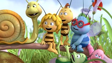 Die Biene Maja: Abenteuer Auf Der Klatschmohnwiese - Die Biene Maja: Lara Lässt Es Regnen