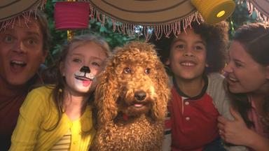 Wuffel, Der Wunderhund - Wuffel, Der Wunderhund: Die Geburtstagsparty