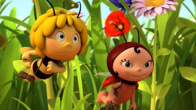 Die Biene Maja: Abenteuer Auf Der Klatschmohnwiese - Die Biene Maja: Der Buschwindbote