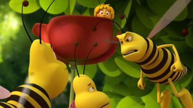 Die Biene Maja: Abenteuer Auf Der Klatschmohnwiese - Die Biene Maja: Der Neue Schüler