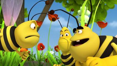 Die Biene Maja: Abenteuer Auf Der Klatschmohnwiese - Die Biene Maja: Der Große Pollenklau
