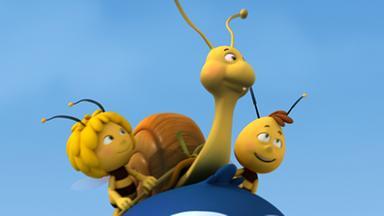 Die Biene Maja: Abenteuer Auf Der Klatschmohnwiese - Die Biene Maja: Rufus Wachsen Flügel