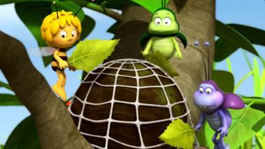 Die Biene Maja: Abenteuer Auf Der Klatschmohnwiese - Die Biene Maja: Der Meistgesuchte Mist
