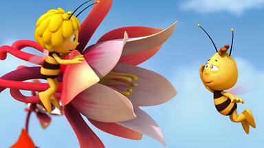 Die Biene Maja: Abenteuer Auf Der Klatschmohnwiese - Die Biene Maja: Majas Blume