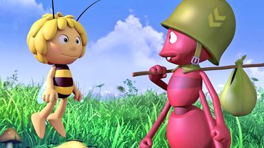 Die Biene Maja: Abenteuer Auf Der Klatschmohnwiese - Die Biene Maja: Die Ameisen Machen Urlaub