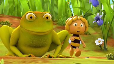 Die Biene Maja: Abenteuer Auf Der Klatschmohnwiese - Die Biene Maja: Die Wiesenfreunde